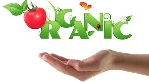 فوايد مواد غذايي ارگانيك