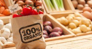 فواید مصرف غذای ارگانیک