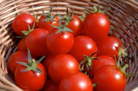 فواید مصرف گوجه فرنگی