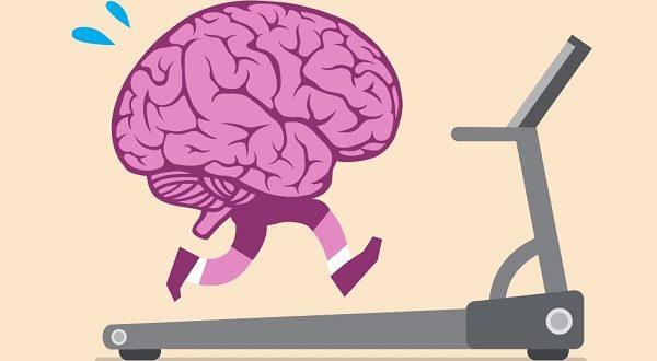 ورزش و عملکرد مغز